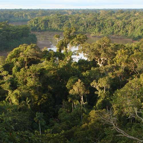 Southwest Amazon Conservation with WWF